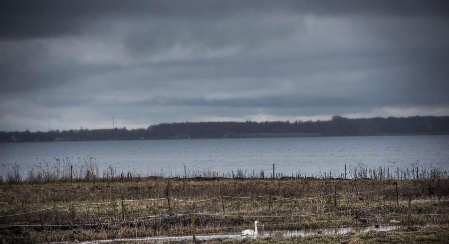 Arkivfoto: En ung mand savnes fortsat mandag, efter at en båd, han var ude at sejle med, lørdag grundstødte og brød i brand på Roskilde Fjord.