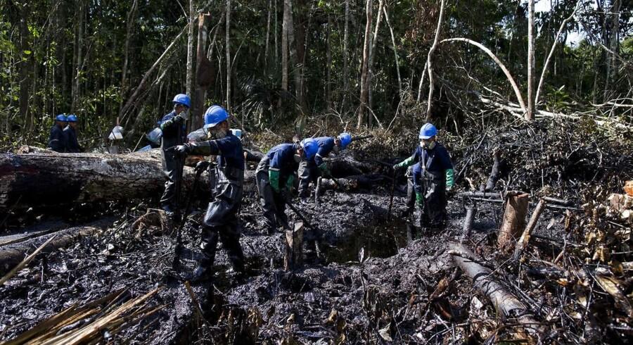 Det er ikke første gang, der har været olieudslip i Loreto. Her er det i august 2011, hvor 100 tønder olie løb ud i junglejorden.