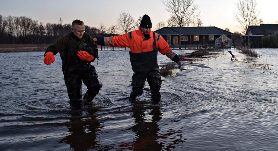 Arkivfoto fra oversvømmelse i Roskilde Fjord efter et dæmningsbrud i Jyllinge.