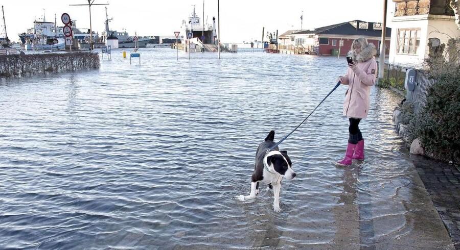 Vandet er nået et godt stykke over kajkanten, og har oversvømmet flere gader ved havnen i Assens onsdag den 2. januar 2019.. (Foto: Kim Rune/Ritzau Scanpix)
