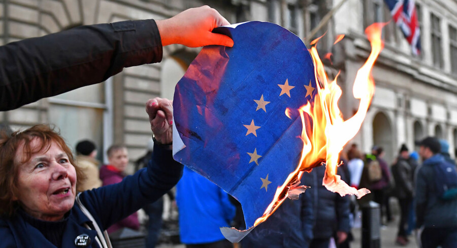 Her er demonstranter fra den hårde Brexit-fløj, som før jul under en demonstration i London brændte EU-flaget af.