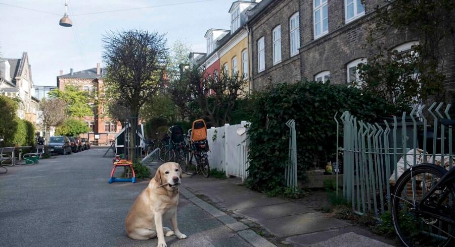 Teknik- og Miljøforvaltningen i København har opkrævet for høje gebyrer for at holde godt 4.000 grundejeres fortove fri for skrald og snavs. Det drejer sig om Grundejere i Indre By, Christianshavn, dele af Nørrebro og dele af Vesterbro.