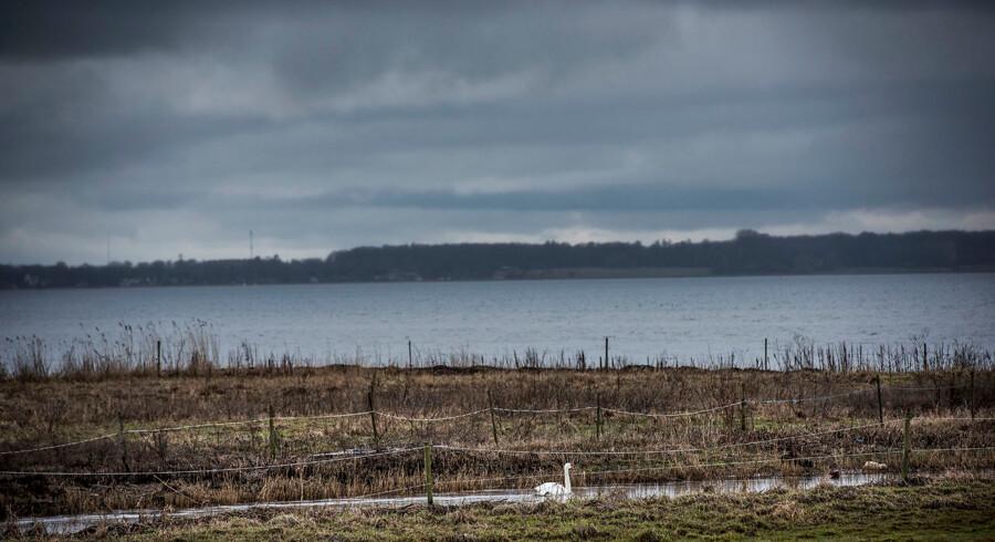 10. februar kom det frem, at de fattigste kommuner nu ligger på Sjælland udenfor København. Alle kommunerne rundt om Roskilde Fjord og Isefjord har nu en likviditet på under 4.200 kroner pr. indbygger. Her ses Roskilde fjord ved udløbet af Havelse Å mellem Frederikssund og Frederiksværk.