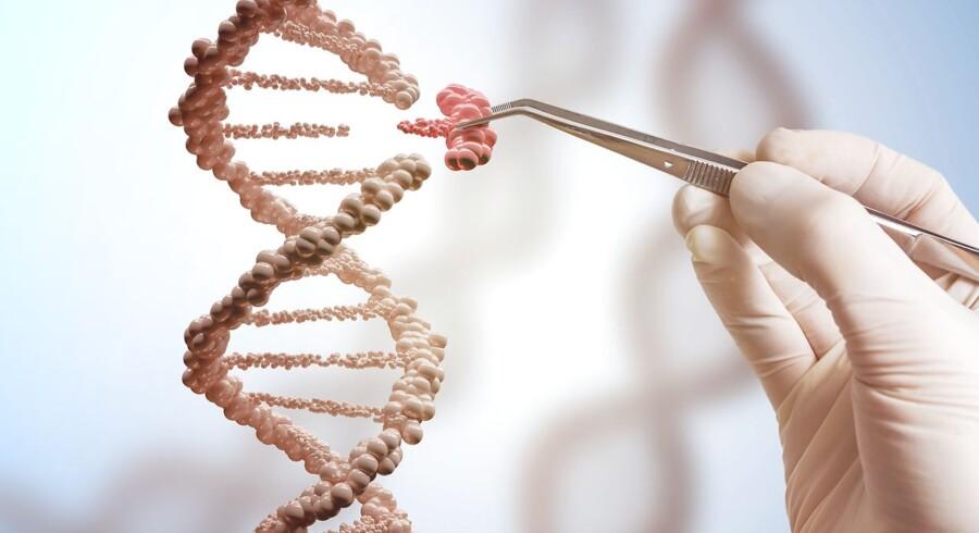 Biotekselskabet Snipr Biome får 320 mio. kr. i investeringer af blandt andre Lundbeckfonden, og det er den største serie A-investering i dansk bioteknologi nogensinde. Investeringen skal bruges til at videreudvikle genteknologi, der mere målrettet kan gå ind og fjerne skadelige bakterier.