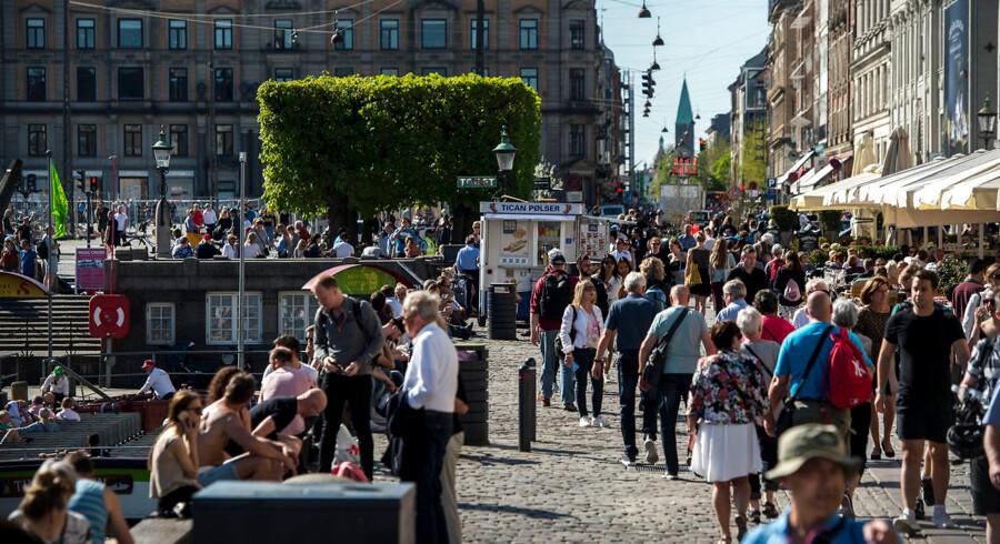 »Du bliver grebet af en træthed. For det irriterende ved turister er, de er egocentrisk optaget af deres egen oplevelse. Den slår alt og alle andre hensyn,« skriver Timme Bisgaard Munk.