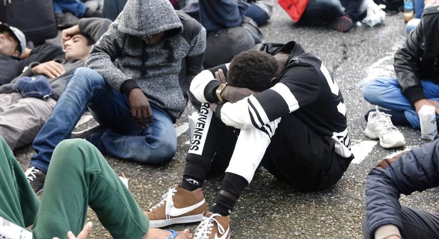 Kommunerne er blevet pålagt at vejlede bl.a. flygtninge om, at de kan få økonomisk støtte til at returnere til deres hjemlande. Billedet stammer fra 2015, da flygtningstrømme ramte de danske motorveje.