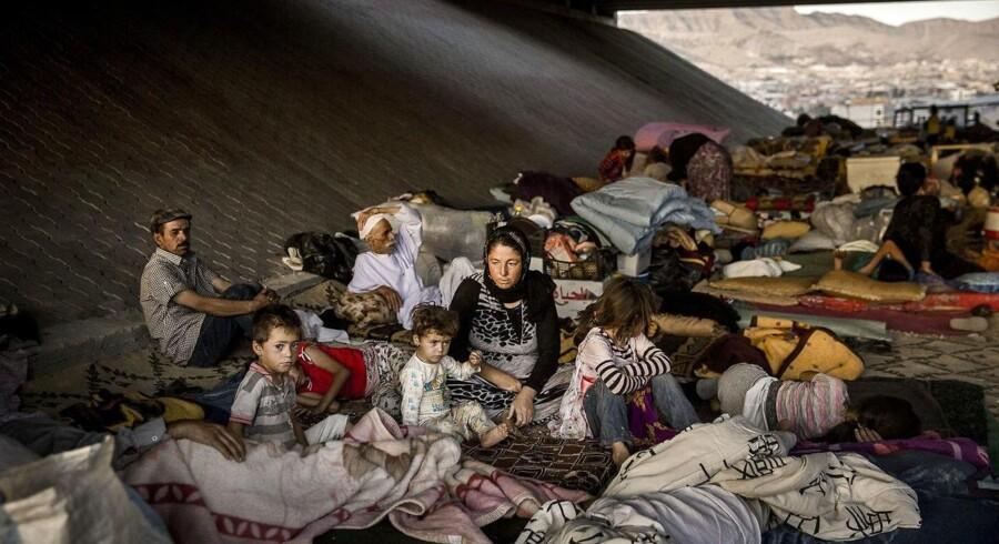 »Red Barnet er til stede i flere af de lejre, hvor børn af IS-krigerne bor. De mangler identitetspapirer, de kan ikke bevæge sig frit, og de har ikke midler til at rejse derfra. Børnene er fanget i overfyldte lejre, hvor flere dør af underernæring, kulde og lungebetændelse. Vi møder også børn, der viser tegn på alvorlige psykiske lidelser,« Foto: Thomas Lekfeldt/Ritzau Scanpix.