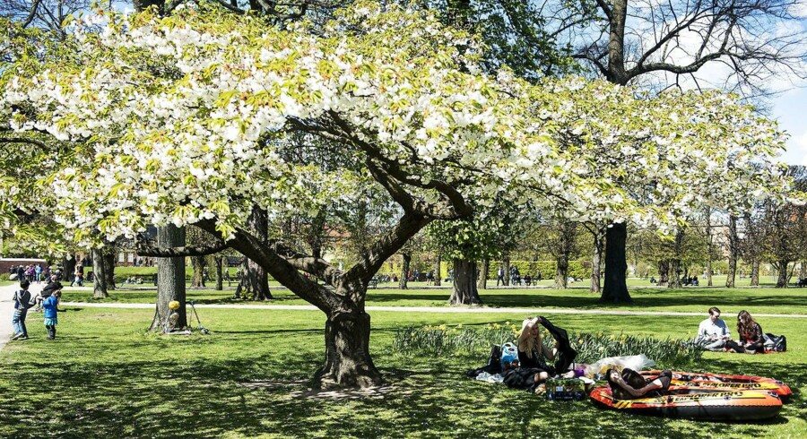 Det fine forårsvejr vender tilbage i den kommende uge og giver gode muligheder for udendørsaktiviteter. (Arkivfoto)
