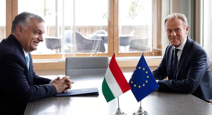 »Lad mig med dette brev henlede jeres opmærksomhed på det faktum, at støtter EPP dette forslag, vil det være en meget alvorlig og måske tilmed en historisk fejltagelse,« skriver Ungarns premierminister, Viktor Orbán, før et EU-topmøde om fordeling af topposter, hvor socialdemokraten Frans Timmermans ønskes som formand for EU-Kommissionen. - Foto: Virginia Mayo/Ritzau Scanpix