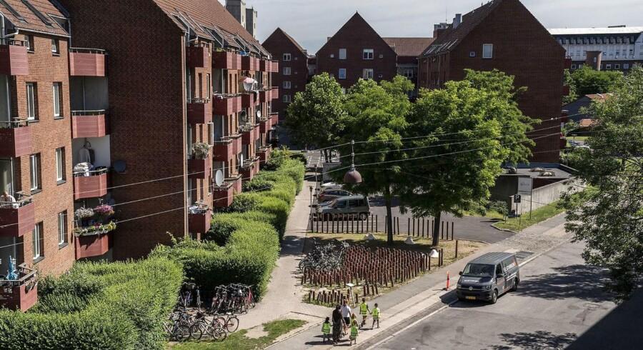 »Jeg er født og opvokset på Nørrebro og kan sagtens genkende billedet. (...) Unge med indvandrerbaggrund skaber frygt i et helt nabolag. Værst er det at høre om den seksuelle chikane, som nogle unge piger bliver udsat for,« skriver Lars Aslan Rasmussen.
