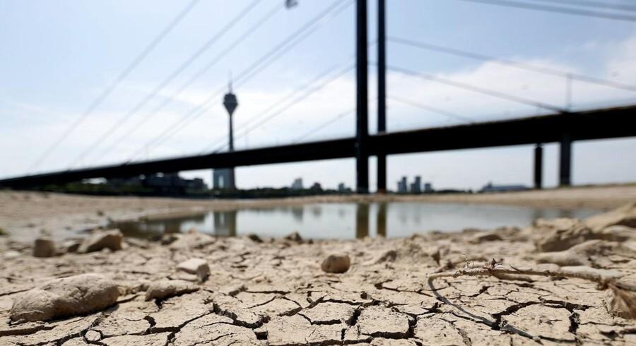 For andet år i træk er de tyske floder ramt af faldende vandstand. Det er en af forklaringerne på svækkelsen af tysk økonomi, men det er langtfra den vigtigste.