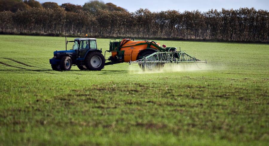 Markene sprøjtes. En landmand i sin traktor og sprøjtemaskine sprøjter markerne nær Nørhalne.