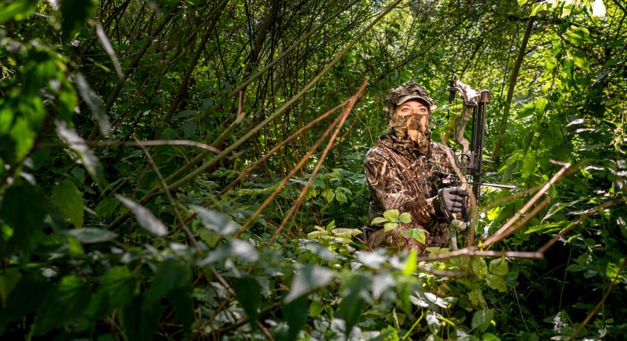 Jagt med bue og pil er anderledes end traditionel jagt. Det er sværere, fordi jægeren skal på 20 meters afstand af et dyr, som skal nedlægges.