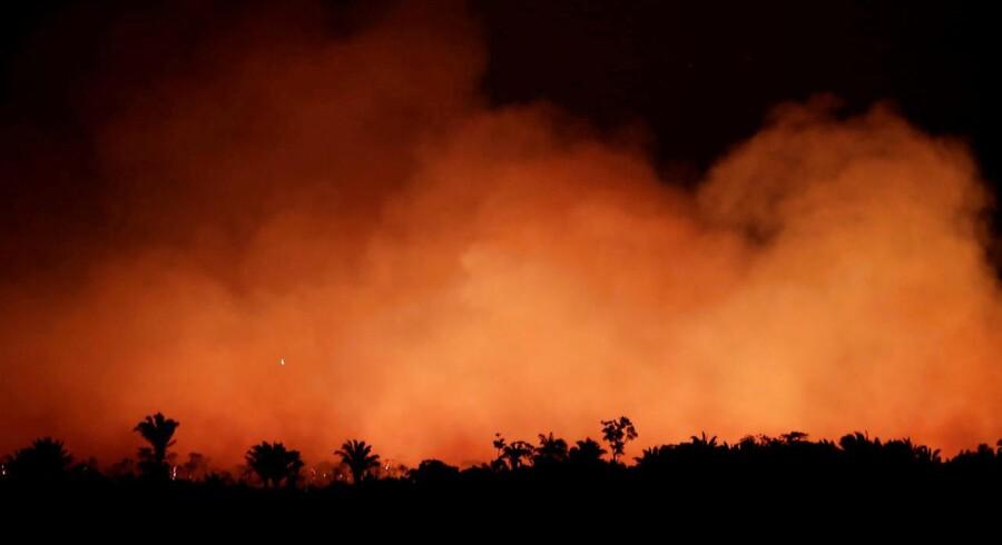 Regnskov i brand. Dette billede er taget tæt på Humaita i Brasiliens Amazonas-delstat 17. August 2019. Foto: Ueslei Marcelino/Ritzau Scanpix