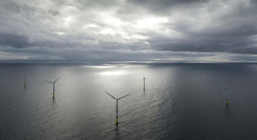 DONGs offshore vindmøllepark, Borkum Riffgrund i den tyske Nordsø.