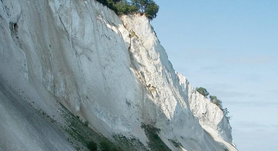 Møns Klint er skabt i kridttiden for omkring 70 millioner år siden og rækker 128 meter op over havet. Foto: Steffen Ortmann