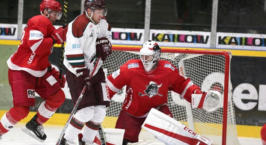 - -Pressefoto fra Danmarks Ishockey Union- - (Grundspils kamp mellem Rødovre Mighty Bulls og Odense Bulldogs, spillet i Rødovre Skøjtehal den 28. Oktober 2016) Pressefoto: DIU - Jan Korsgaard