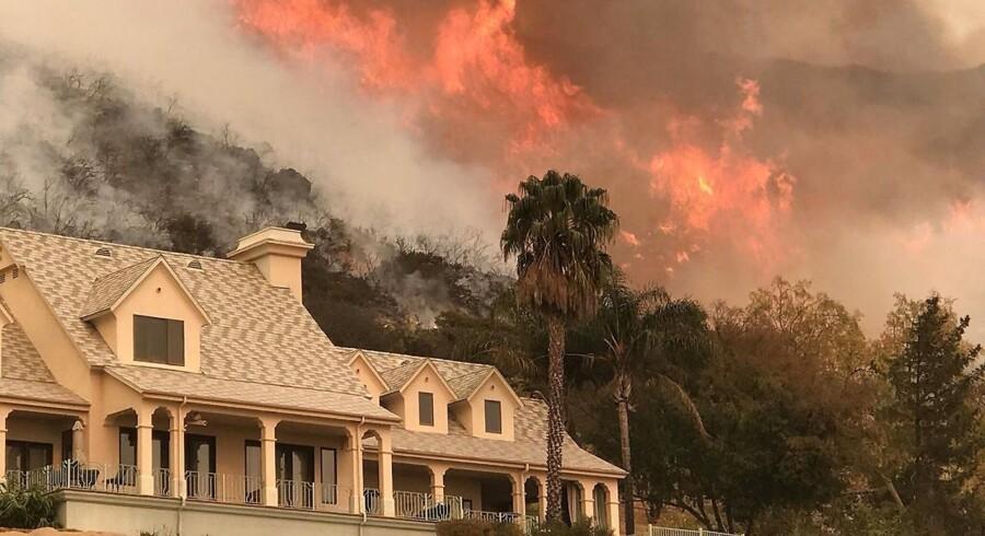 Den alvorlige skovbrand i Californien fortsætter med at sprede sig. EPA/MIKE ELIASON / SANTA BARBARA COUNTY FIRE / HANDOUT HANDOUT HANDOUT EDITORIAL USE ONLY/NO SALES