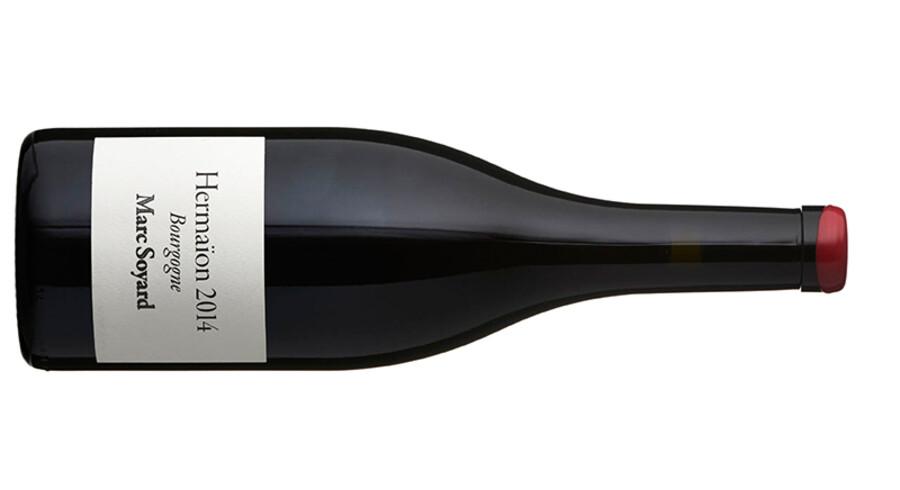 Bourgogne Hermanïon, Marc Soyard