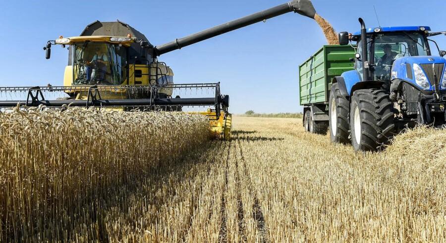 Landbruget er optimistisk.