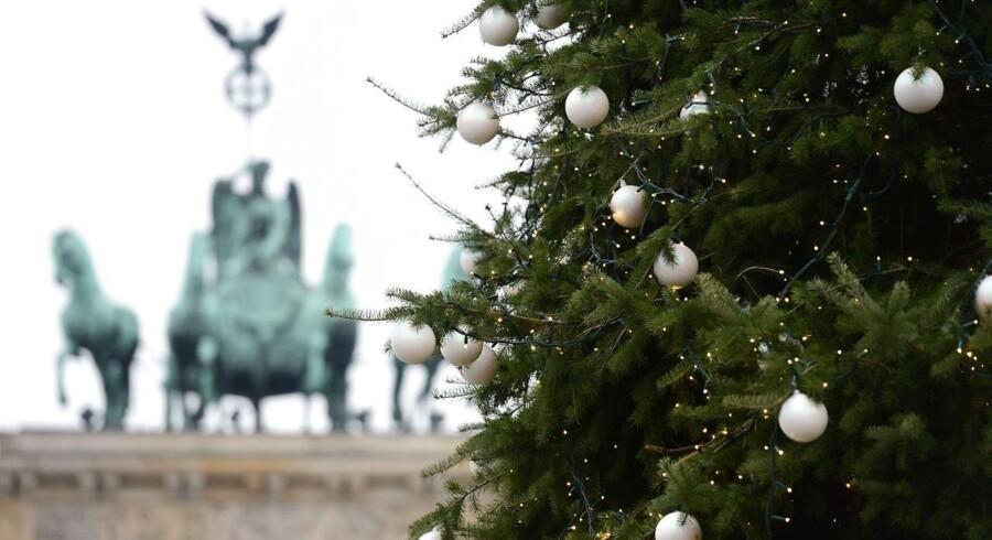 Et juletræ pryder pladsen ved Brandenburger Tor i Berlin. Pragttræerne på de store berlinske pladser er indtil videre blevet leveret fra Norge.