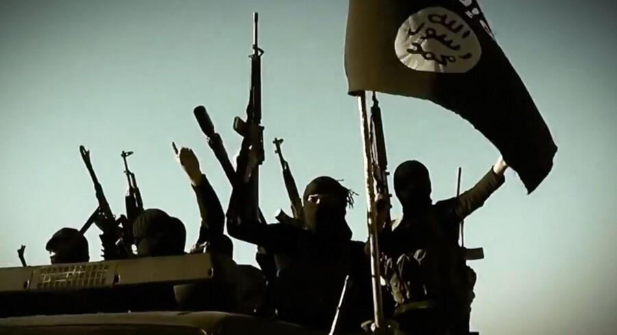 For det brede politiske flertal, der står bag den nye krigsdeltagelse, er der ikke noget andet alternativ end at gå hårdt op mod terrororganisationen IS.