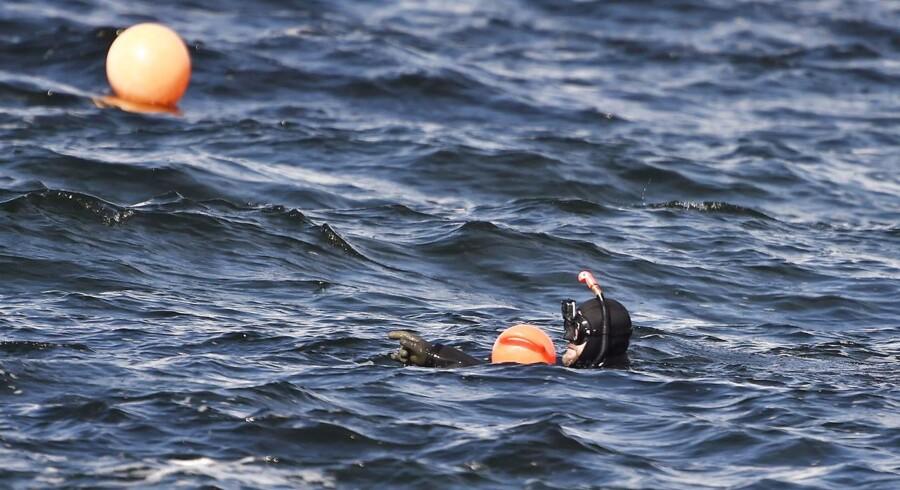Dykker i vandet, hvor politiet arbejder på Kalvebod Fælled ved Klydesøen på Amager, tirsdag den 22 august 2017. I vandet ved Kalvebod Fælled fandt politiet, mandag den 21 august 2017, en kvindetorso. Liget er endnu ikke identificeret.