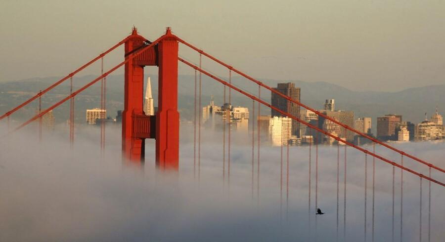 Bag Golden Gate Bridge strækker San Franciscos skyline sig over tågedækket. Byen har i mange år været en destination for drømmere og kreative i alle lag, men det er blevet sværere at få adgang til byen på grund af én industri: Software.