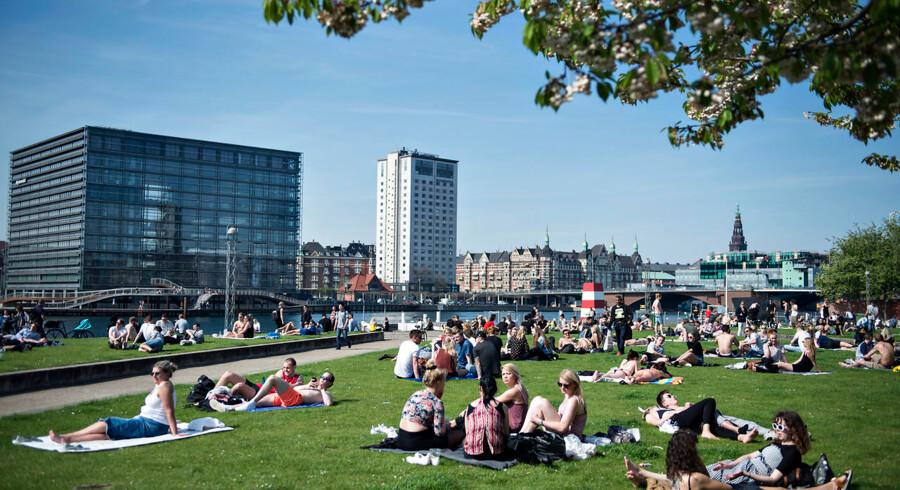 I en ny undersøgelse blandt københavnere angiver mere end en femtedel, at de mener allerede i dag at være påvirket af klimaforandringerne.