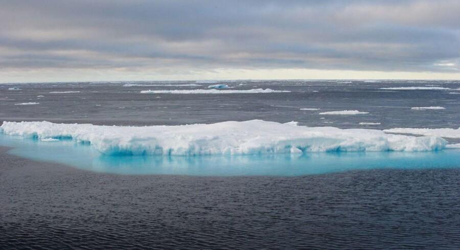 »FNs klimapanel, som er guldstandarden for klimaforskning, finder at den samlede påvirkning fra global opvarmning i 2070erne vil svare til et tab på 0,2 til 2 pct. i gennemsnitsindkomsten. Det er et problem, men det er ikke verdens ende,« skriver Bjørn Lomborg.