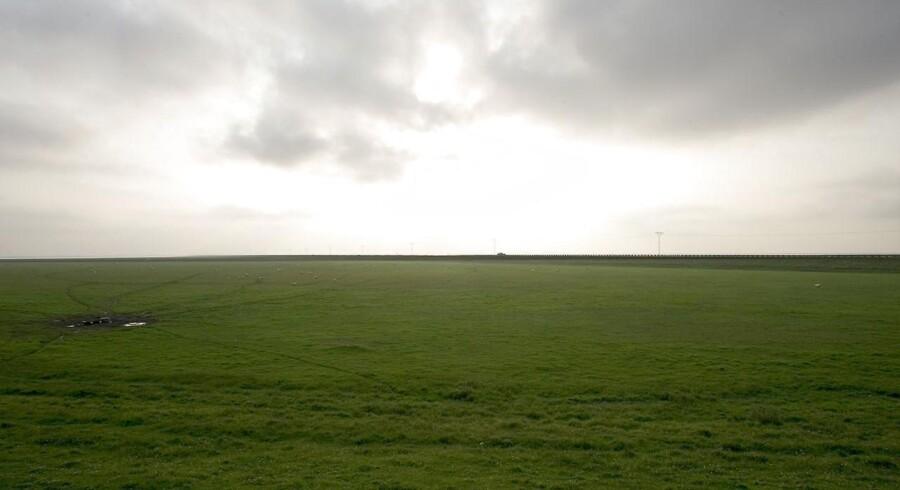 Den store himmel, det flade land – og dæmningen til Rømø. Her var smukt, men i 70erne føltes Sønderjylland mest som en blindgyde.