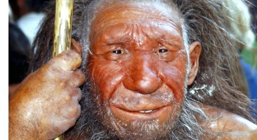 Figur af neandertaler ved indgangen til neandertal-museeet i Mettmann, Tyskland.