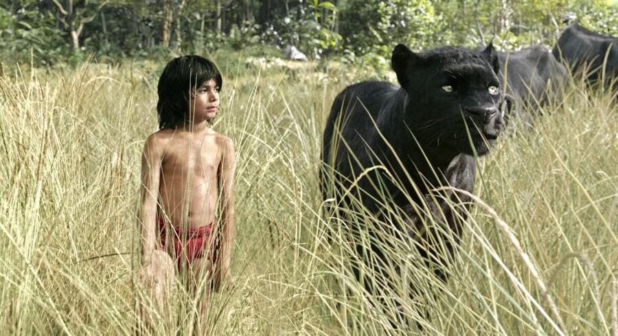 Mowgli og Bagheera (med Ben Kingsleys stemme) i »Junglebogen«. Foto: PR