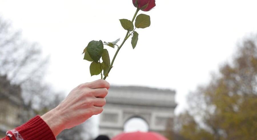 En aktivist vifter med en rose under lørdagens demonstrationer i Paris, hvor de 195 lande sent lørdag eftermiddag fortsat tyggede på udkastet til en klimaaftale af historiske dimensioner.