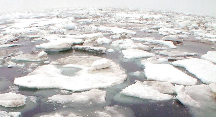 De historisk store temperaturstigninger sætter yderligere fart i afsmeltningen af ismasserne på både Nord- og Sydpolen. Det får vandstanden i verdenshavene til at stige, og det kan ramme lavtliggende lande som Danmark hårdt. Arkivfoto: Peter West/AFP