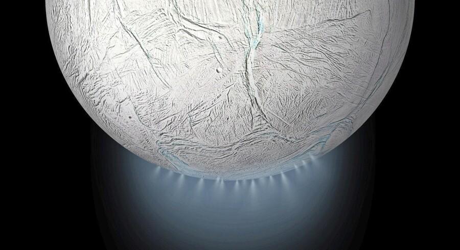 Cassinisonden fløj flere gange direkte gennem sprøjtende gejsere på den isdækkede saturnmåne Enceladus. Sandsynligvis gemmer der sig et ocean under isen. Foto: NASA