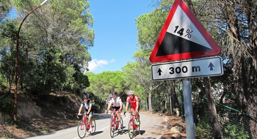 Det er på Rocacorba, der er ca. 13 km med en stigning på 14 pct., de professionelle ryttere tester formen.
