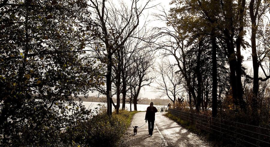 Københavnske parker fredes. Damhussøen er en del af det parkområde, der nu er fredet.