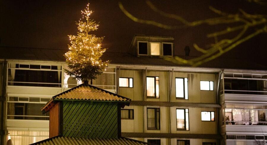 ARKIVFOTO 2012 af juletræet i Egedalsvænge i Kokkedal