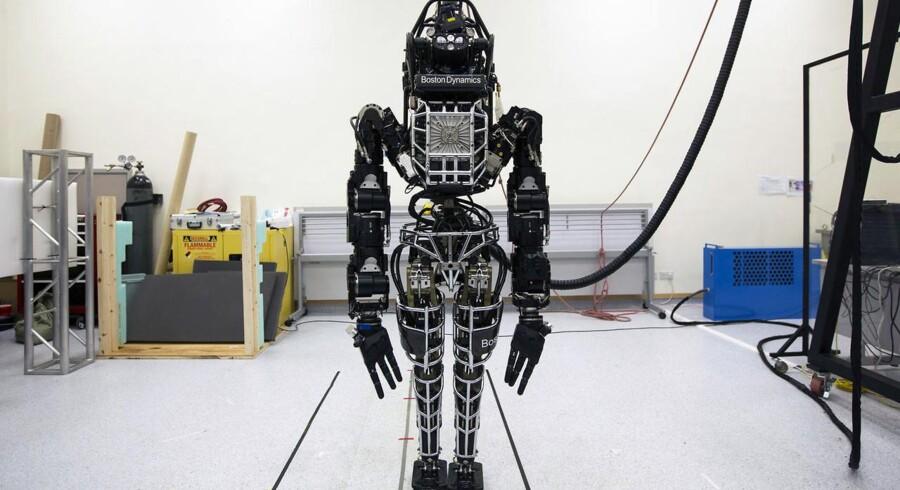 Google har over weekenden bekræftet købet af en af verdens mest avancerede robot-producenter. Googles seneste i rækken af robot-opkøb i år. På billedet set den menneskelignende »Atlas«. Spørgsmålet er, hvad Google skal bruge robotterne til. Foto: Scanpix.