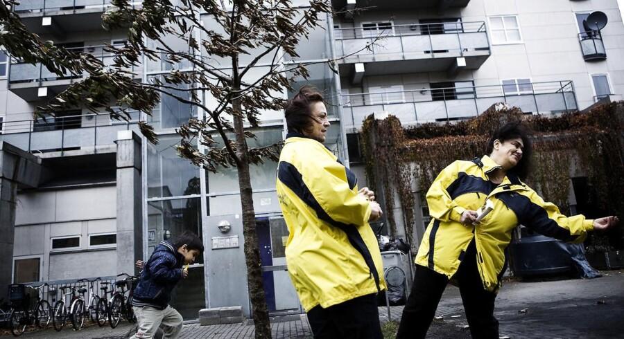 Dagravne går rundt i Urbanplanen på amager
