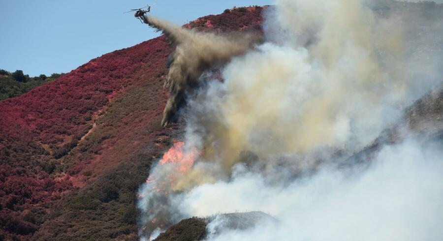 Skovbrand i Californien. Det er en af de stater, der er hårdest ramt af de igangværende skovbrande i USA. Men der er problemer i ti delstater. Scanpix/Josh Edelson