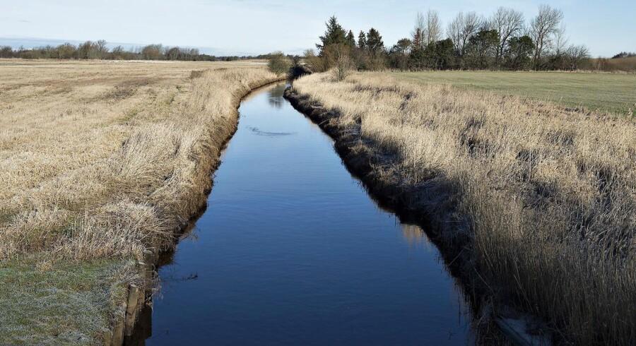 Mere end 90 procent af alle danske vandløb er reguleret, eller ligger i rør.