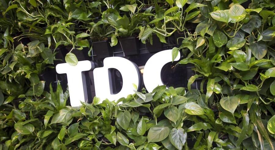 Der er ikke længere så grønt på TDC-toppen, selv om positionen som Danmarks største fastholdes, og der stadig tjenes gode penge. Arkivfoto: Kim Haugaard, Scanpix