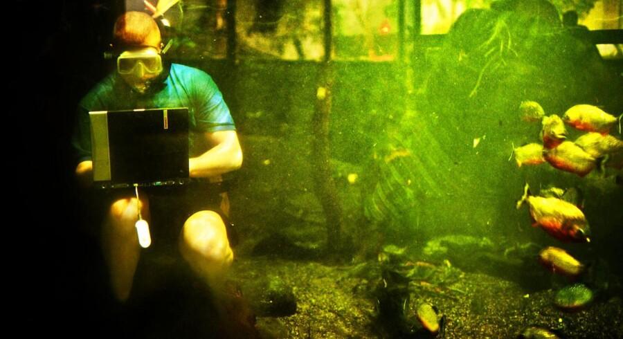 Behovet for at kunne koble mobiltelefoner og computere på Internet via mobilnettet vokser konstant. Derfor er der brug for at finde mere plads og dermed flere radiofrekvenser, så der også er ordentlige forbindelser indendørs - eller sågar under vandet... Arkivfoto: Claus Bech, Scanpix