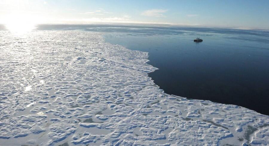 Aftale forbyder fiskeri i kæmpe område ved Antarktis i 35 år. Arkivfoto.