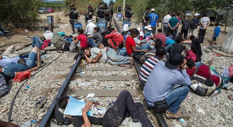 Migranter har slået lejr på grænsen mellem Grækenland og Makedonien.