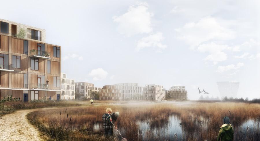Det er planen, at alle beboere i Amager Fælled Kvarter skal have nem adgang til naturen på Amager Fælled.