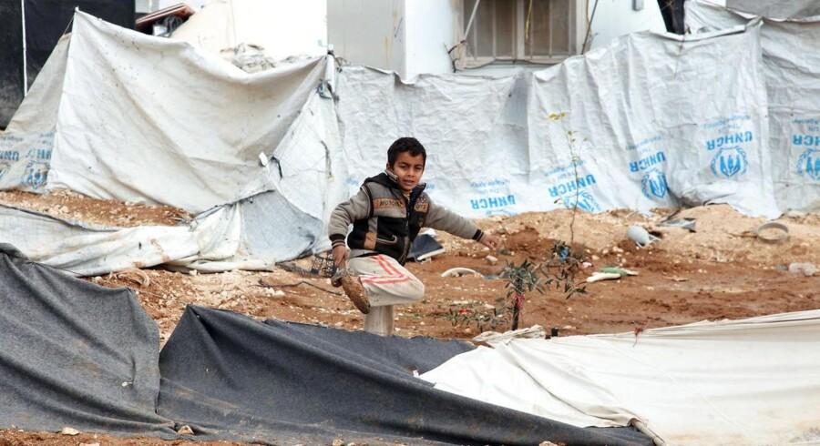 Arkivfoto. Partiet vil sætte syriske asylsager i bero af hensyn til terrorrisikoen. Her ses en syrisk flygtning i en lejr nær byen Mafraq i Jordan.