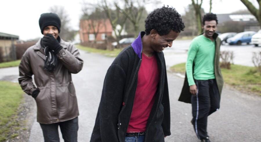 Tre asyl-ansøgere fra Eritrea, der bor i asylcenter Sigerslev, hvor størstedelen af beboerne er fra Eritrea. Fra venstre er det Ferah Mentay, 21, Mlue German, 23, og Daniel Eob, 24, på vej fra asylcentrets sportshal til det hus, hvor de alle tre bor.